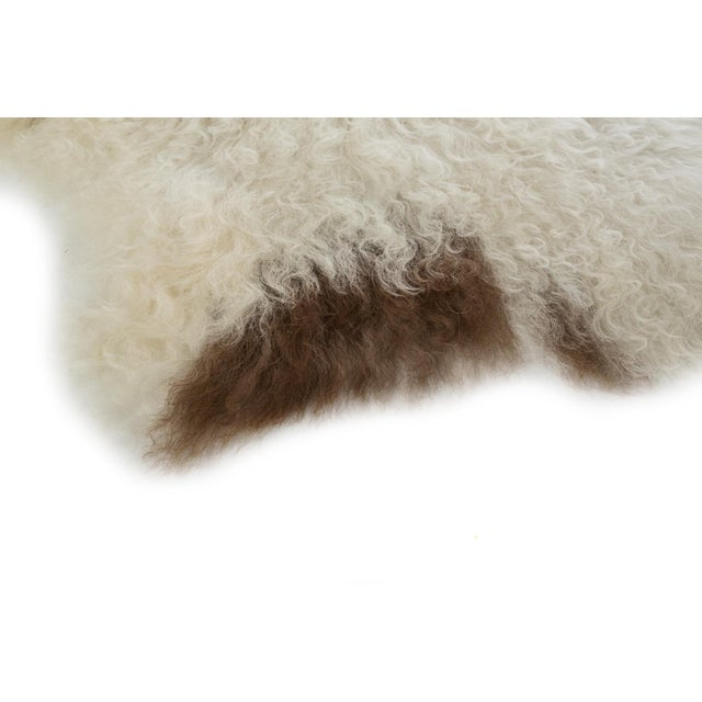"Contemporary Long Soft Wool Sheepskin Pelt - 2'0""x3'0"" For Sale - Image 4 of 6"