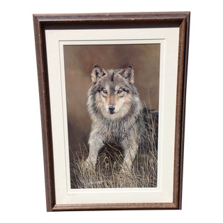 """Trudy Lee Estes """"Time Out"""" American Wolf Print For Sale"""