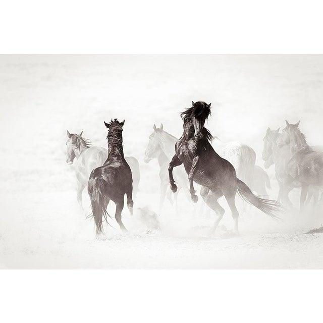 Kimerlee Curyl, Wyoming Renegades II , 2011 For Sale