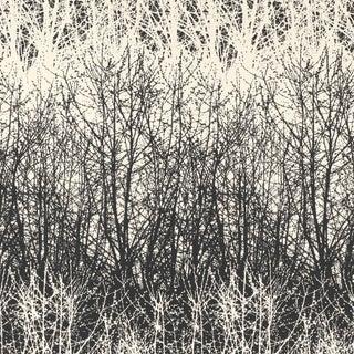 Sample - Schumacher X Vera Neumann Birches Wallpaper in Black / White For Sale