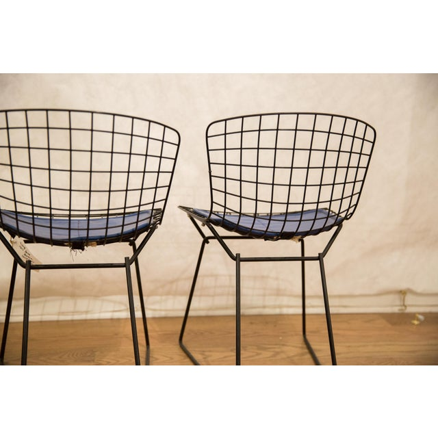 Harry Bertoia Child Chair Pair For Sale In New York - Image 6 of 9