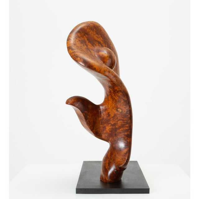 Mounted Abstract Sculpture in Bird's Eye Mahogany For Sale - Image 4 of 7