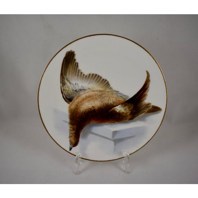 19th C. Bodley Staffordshire Dead Game Plate, the Grouse For Sale - Image 11 of 11