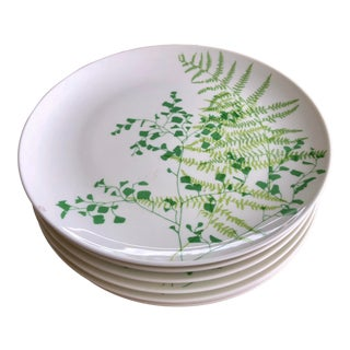 1983 Vera Neumann Lacy Fern Bone China Dinner Plates - Set of 8 For Sale
