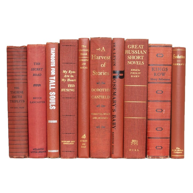 Transitional Mid-Century Sienna ColorPak Book Set For Sale - Image 3 of 4