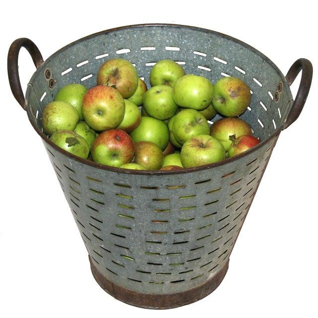 Vintage Olive/Harvest Bucket - Image 2 of 2