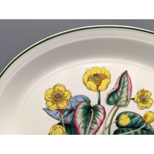 Wedgwood 1970s English Enoch Wedgwood Tuns Botanical Nuphar Luteum Serving Platter For Sale - Image 4 of 9