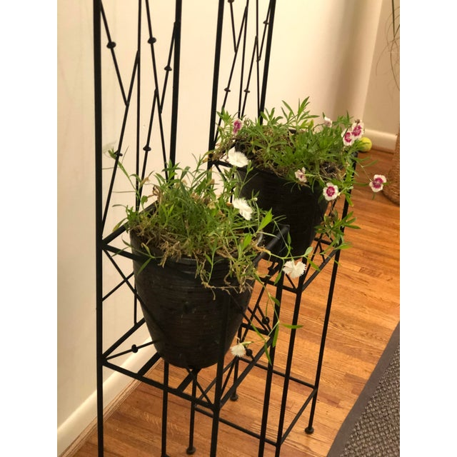 Late 20th Century Iron Trellis Plant Stands - a Pair For Sale - Image 10 of 12
