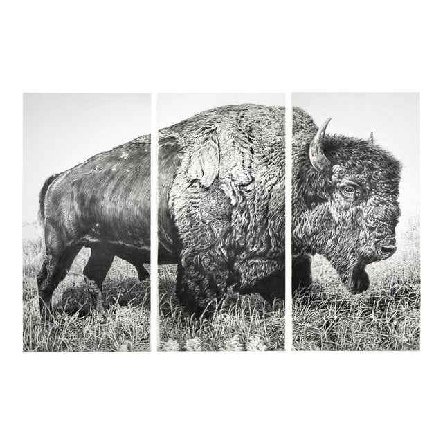 "Contemporary ""Bison"" Rick Shaefer Charcoal Print For Sale"