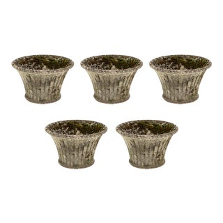 Set of Five French Vintage Jardinieres For Sale