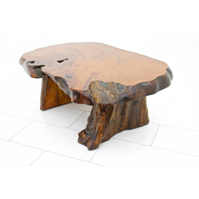 Solid Root Wood Coffee Table, 1960s For Sale - Image 10 of 10