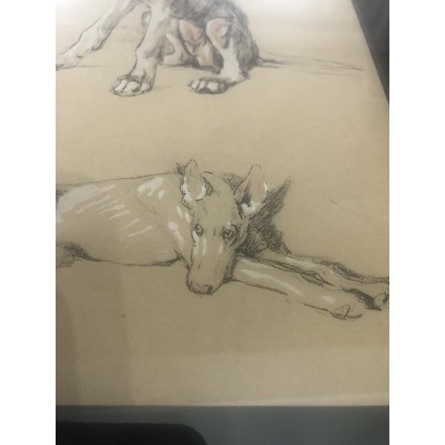 2000 - 2009 2000s Portrait of Dogs Pastel and Ink Drawing, Framed For Sale - Image 5 of 11