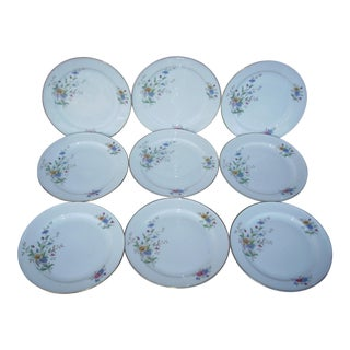 1950s Vintage Rosenthal Dessert Plates - Set of 9 For Sale