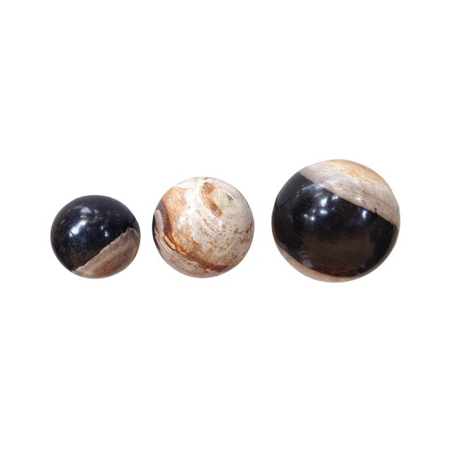 Antique Petrified Wood Balls - Set of 3 - Image 2 of 2