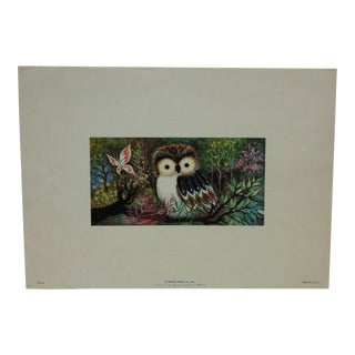 "1970s Realist Bernard Picture Company Color Animal Lithograph Print, ""The Owl & Butterfly"" For Sale"