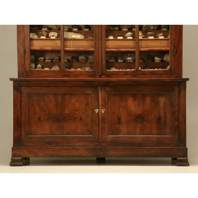 French Specimen Cabinet or Bookcase, circa 1891 For Sale - Image 9 of 11
