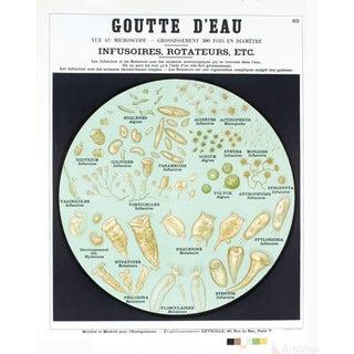 """Emile Deyrolle """"Goutte d'Eau"""" (The Drop) Lithograph Poster For Sale"""