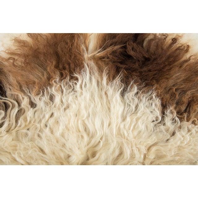 "2010s Contemporary Long Wool Sheepskin Pelt/Handmade Rug - 2'0""x3'2"" For Sale - Image 5 of 6"