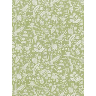Scalamandre Tulia Linen Print, Willow Fabric For Sale