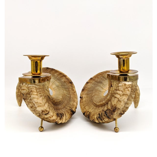 1960's Ram's Horn and Brass Candlesticks - a Pair For Sale - Image 9 of 10