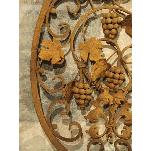 Decorative Oval Iron Wall Hanging With Scrolling Grape Vines For Sale - Image 10 of 11