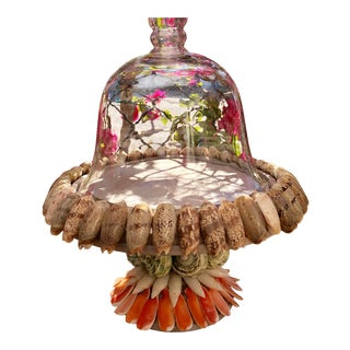 Seashell Pedestal Glass Cloche For Sale