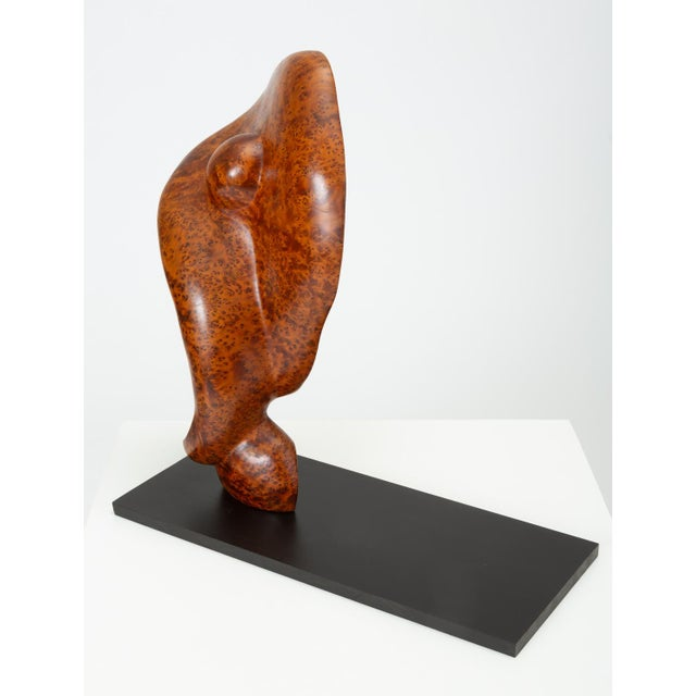 Mounted Abstract Sculpture in Bird's Eye Mahogany For Sale In Los Angeles - Image 6 of 7