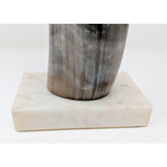 Horn on Marble Base For Sale - Image 11 of 12