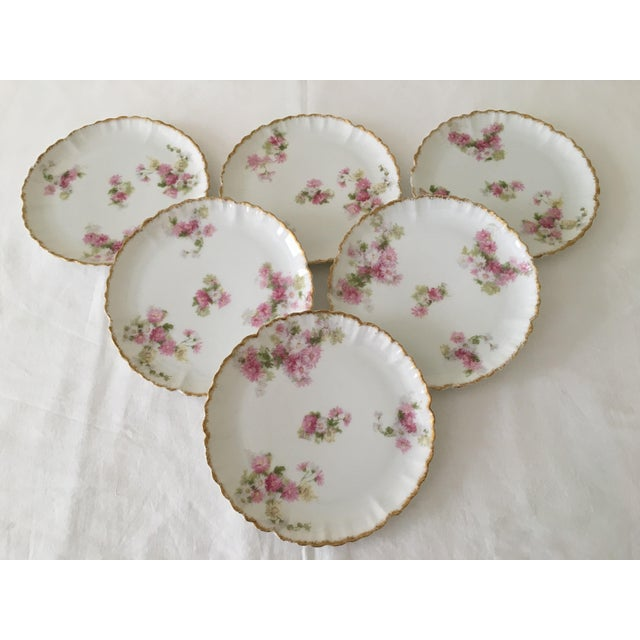 White French Limoges Haviland Dessert Plates - Set of 6 For Sale - Image 8 of 11