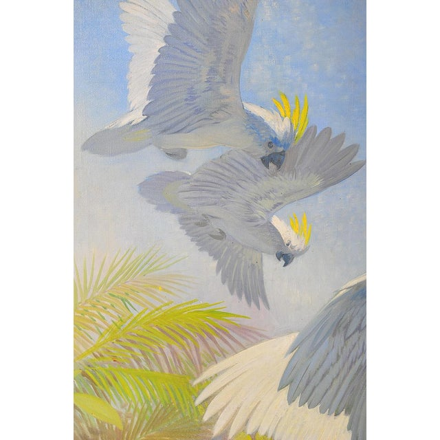 Blue White Parrots, Oil Painting by J. Moessel For Sale - Image 8 of 10