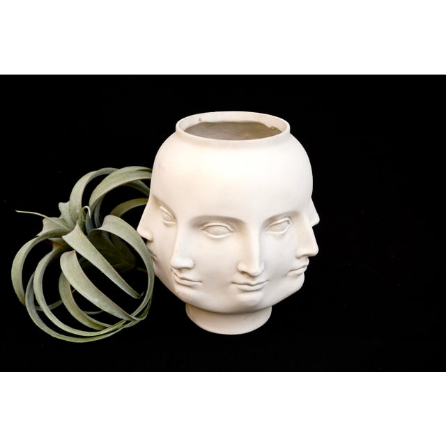 Original Tms 2005 Vitruvian Fornasetti Style Perpetual Face Vase Dora Maar Head Planter For Sale - Image 10 of 13