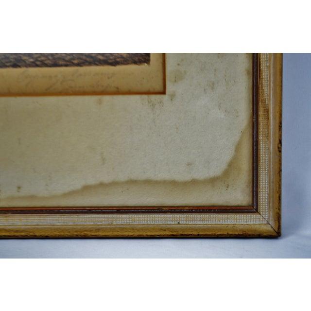 Vintage Ernst Geissendorfer Etching For Sale - Image 9 of 11