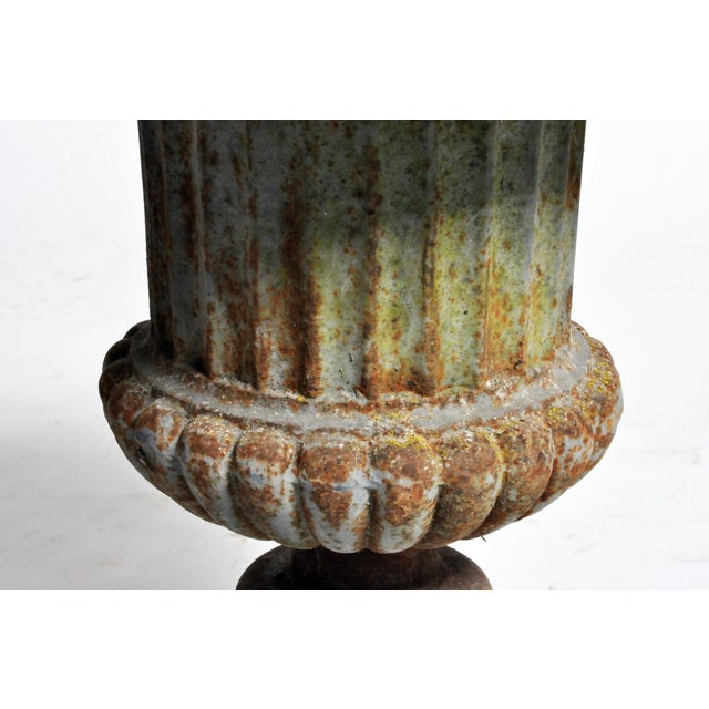 Early 20th Century Cast Iron Planter For Sale - Image 9 of 13