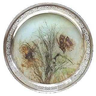 Antique German Pressed Butterfly Tray For Sale