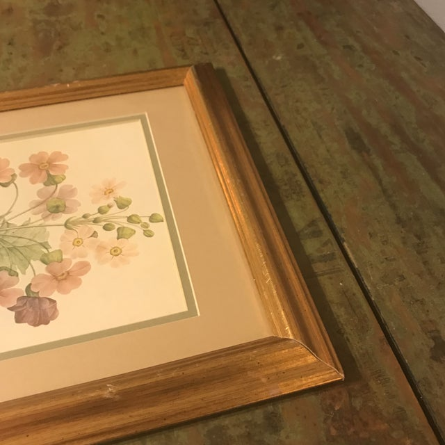 Green Vintage PJ Redoute Botanical Framed Prints - A Pair For Sale - Image 8 of 13