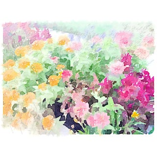 """""""Spring Flowers"""" Watercolor Print by Jean Montanti For Sale"""
