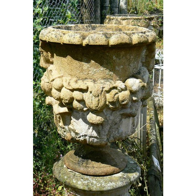 Gorgeous near pair cotswold stone planters. Very rare 18th century garden urns imported from England. Make and offer.