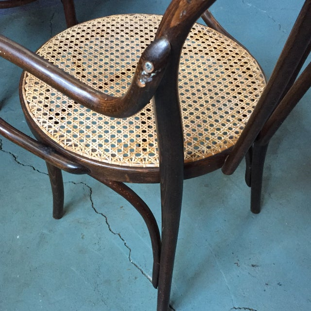 Thonet Bentwood Armchairs With Cane Seats - A Pair - Image 9 of 11