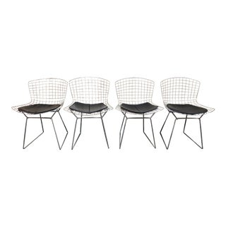Knoll Studio Harry Bertoia Chairs - Set of 4 For Sale