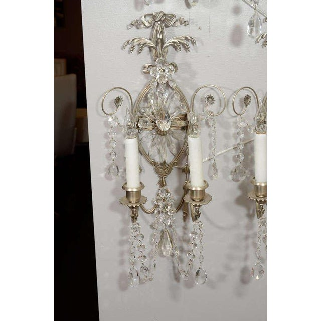 Silver Pair of 19th Century Silver Leaf and Crystal Sconces For Sale - Image 8 of 8