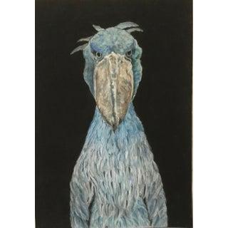 """""""Shoebill"""" African Bird Artwork For Sale"""