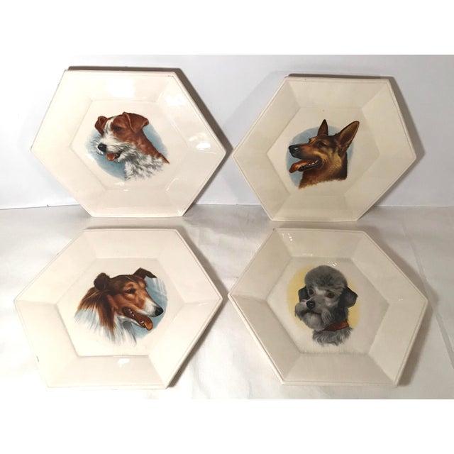 Vintage Ceramic Dog Plates - Set of 4 For Sale - Image 11 of 11