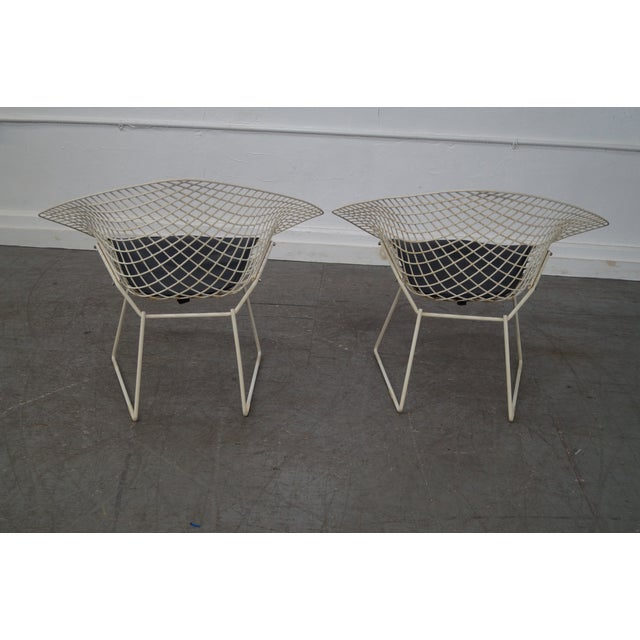 Harry Bertoia for Knoll Lounge Chairs - Pair - Image 6 of 10