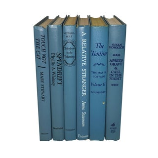 Vintage Display Books in Blues - Set of 6