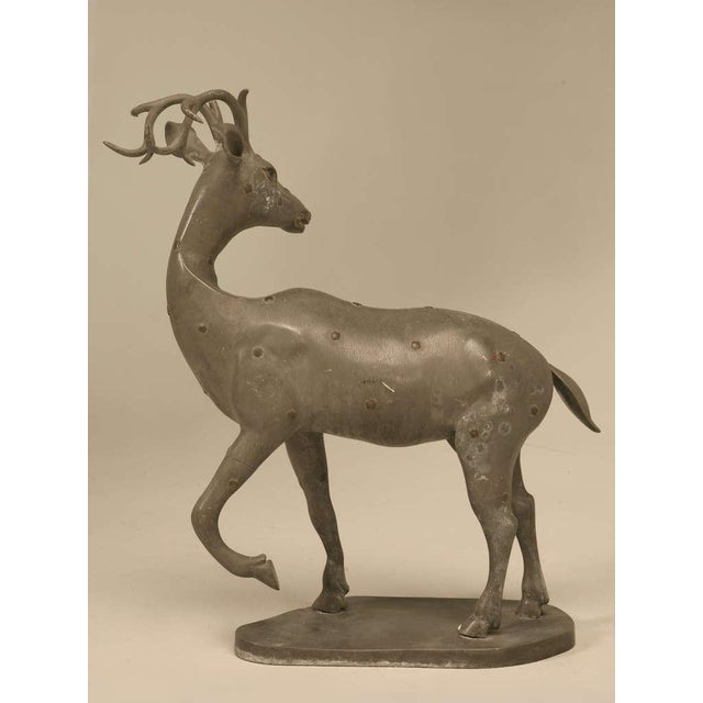 Vintage c1930's (best guess) French Zinc sculpture of a stag with bronze rosette highlights. Please look carefully for...