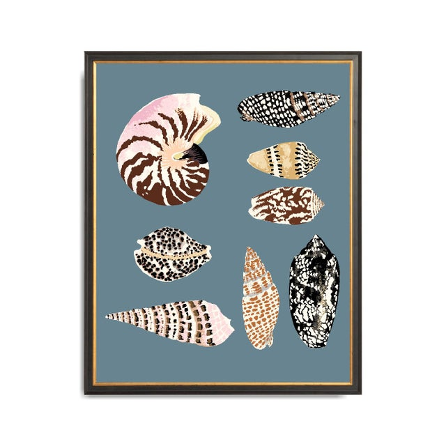 """Mid-Century Modern """"Fiji Shells in French Blue"""" Contemporary Giclee Print by Sarah Gordon For Sale - Image 3 of 5"""