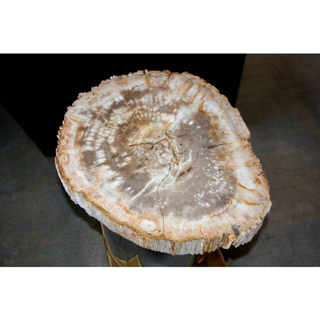 Brass Petrified Wood Table With Brass and Chrome Base For Sale - Image 7 of 13