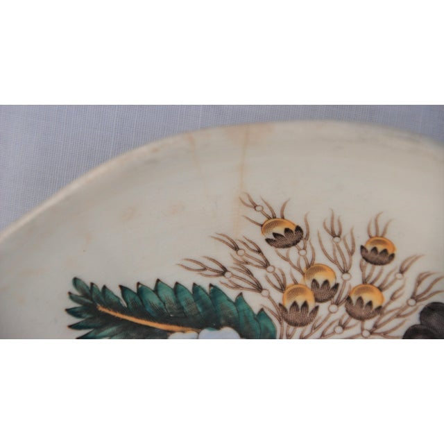 Spode Vintage English Cottage Style Spode Saucer in the Reynolds Pattern For Sale - Image 4 of 8