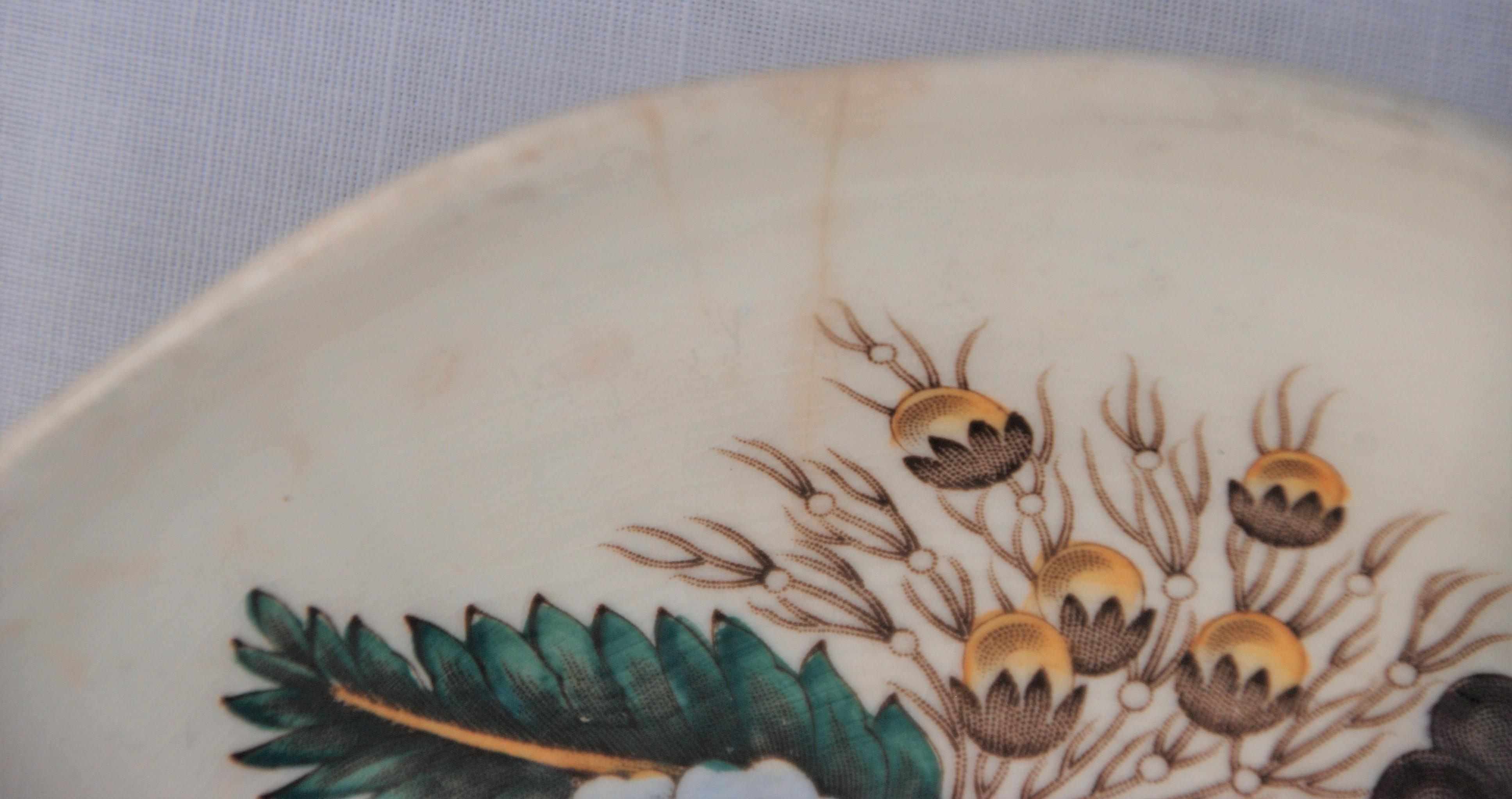 Vintage Spode Saucer In The Reynolds Pattern Chairish