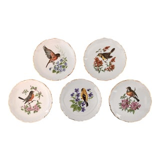 Vintage Decorative Bird and Floral Plates - Set of 5 For Sale